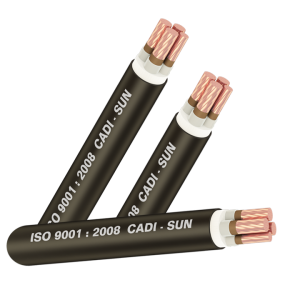 Cáp chống cháy FRN-CXV 3X+1X (Sao chép)