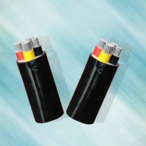 AV – 0,6/1 kV CÁP ĐIỆN LỰC, RUỘT NHÔM, CÁCH ĐIỆN PVC (Sao chép)