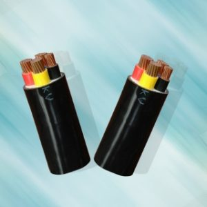 CV – 0,6/1 kV CÁP ĐIỆN LỰC, RUỘT ĐỒNG, CÁCH ĐIỆN PVC (Sao chép)