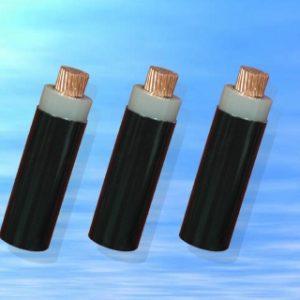 CVV − 0,6/1 kV CÁP ĐIỆN LỰC, RUỘT ĐỒNG, CÁCH ĐIỆN PVC, VỎ PVC (Sao chép)